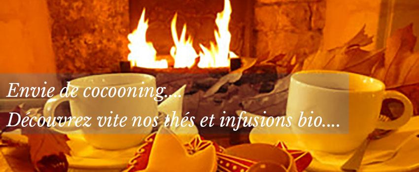 Le froid arrive... découvrez nos thés bio